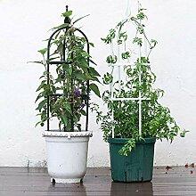 YQYAZL Garten-Obelisk-Gitter für Kletterpflanzen,
