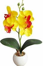 ysister Phalaenopsis Bonsai Künstliche Orchidee