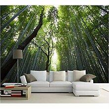 Ytdzsw Dschungel Trail Green Forest Hintergrund