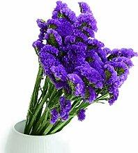 Yw-Flower Natürlicher