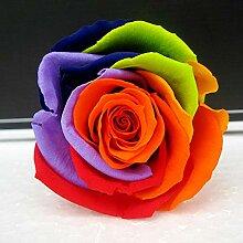 Yyzhx Eternal Flower Geschenk-Box für