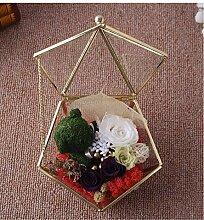 Yyzhx Ewige Blume Flower House Geschenk Box