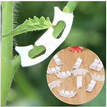 Z-LIANG 100Pcs Pflanze Tomate Clip Fastener