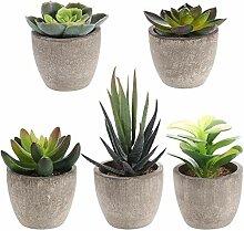 Z-LIANG 5PCS Retro Artificial Succulents