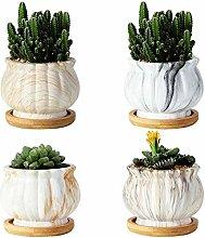 Z-LIANG 8Pcs Töpfe Keramik Fleshy Blumentopf