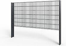 Zaun Gabionen Doppelstabmatte Gartenzaun Sichtschutz 1230mm 20m anthrazi