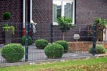 Zaunanlage Komplett Preis für 75m Zaun 1230mm Höhe RAL7016-anthrazit Doppelstabmattenzaun, Gartenzaun, Metallzaun, Zäune, Tor, Gartentor,