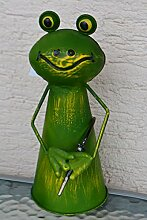 Zaunhocker Frosch mit Gartenschlauch, 23,5 cm-lustiger Zaungucker Gartenfrosch -Gartenzaungucker -aus Metall- für Haus und Garten,stabile Ausführung