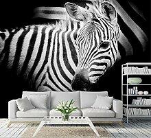 Zebra Fototapete Tier Tapete Schlafzimmer Tapete