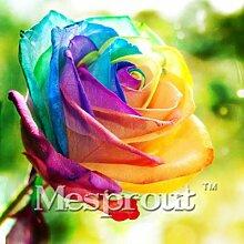 Zeit-Limit 100 Teilchen mit einer großen Sammlung aller Arten von seltenen Rosen-Samen Mehrjährige Blumen 14 Rosensorten ME # 007 5