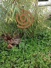 Zen Gartenstecker Beetstecker Glaskugel ros