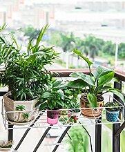 ZHANWEI Blumenständer Balkon Geländer Blume Haube Hängen Hängen Rahmen Hängen Eisen Topf Blumen Regal Blumenregal ( größe : 80cm )