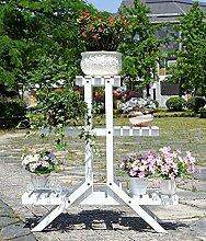 ZHANWEI Blumenständer Blumenrahmen Eisen
