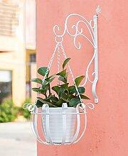 ZHANWEI Pflanzentreppe Eisen Wand Hängende Blumentöpfe Indoor Kreative Blumen Korb Regal Balkon Blumen Regal Blumenständer ( Farbe : A )