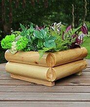 ZHANWEI Pflanzentreppe Korrosionsschutz Holz Karbonierte Blumentöpfe Balkon Quadratische Blumentöpfe Grüne Pflanzen Einfache Persönlichkeit Kreative Blumentöpfe Blumenständer ( Farbe : A , größe : 22cm )