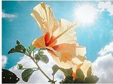 ZHAOHH 5d DIY voll runde Diamant malerei Blume