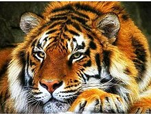 ZHAOHH Diamant malerei Tiger kreuzstich Daimond