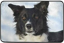 Zhengzho Border Collie Dog Winter Bild Rutschfeste