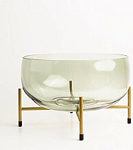 ZHIHUIflower Eisenrahmen, Vase Glas,