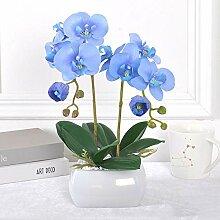 ZHONGLONGZHONG Künstliche Blume Phalaenopsis