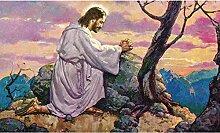 zhqingyu Religiöser Jesus kniend und betend