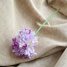 ZHUDJ Fotografie Kulissen Hortensie Blume Pflanze
