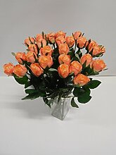 Ziegler 36 x Rose Edelrose 36tlg. Set Seidenblume
