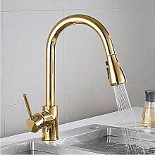 Ziehen Sie Küchenarmatur Gold/Nickel Spüle