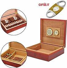 Zigarren Humidor | hoch-präziser Haar-Hygrometer