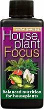 Zimmerpflanze Focus ausgewogene Liquid Konzentrierte Dünger 100ml