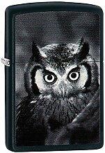 Zippo OWL Benzinfeuerzeug, Messing, Edelstahloptik