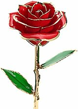 ZJchao Damen Ewige Rose, Geschenkidee zum