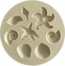 Zonster Ozean Biologische Conch Muscheln