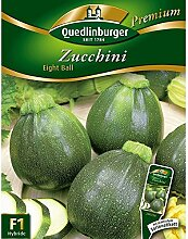 Zucchini 'Eight Ball' F1, 1 Tüte Samen