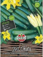 Zucchini Leila F1