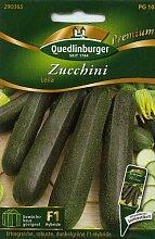 Zucchini, Leila F1