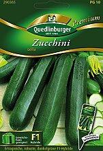 Zucchini Leila von Quedlinburger Saatgu