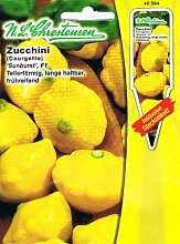 Zucchini Sunburst F1 (Portion inkl. Stecketikett)