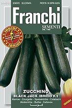 Zucchinisamen - Zucchini Black Jack Hybrid F.1 von Franchi Sementi