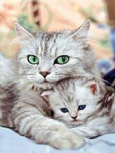Zwei Katze Diamant Malerei 5D DIY Stickerei Kreuz
