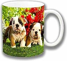 Zwei süß Englisch Bulldogge Welpen im Garten Keramik Tee Kaffee Tasse Einzigartige Geschenkidee