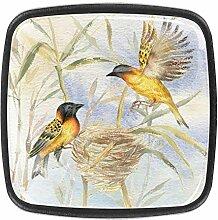 Zwei Vögel sitzen in ihrem Nest, quadratische