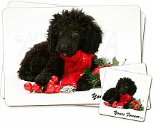 Zwergpudel Hund ' Yours Forever' Zwillings