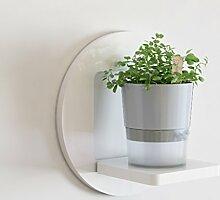 ZWL Kreative Racks, einfache Trend Mode Wohnzimmer
