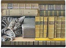ZXL Schlafen Bibliothek Buch Katze Fußmatte