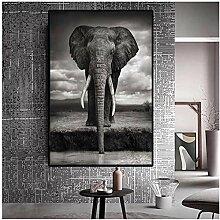 ZXYFBH Poster Bilder Wild Africa Elephant Animal
