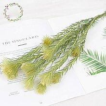 ZYC-WF Goldene GäNsedaunen, Getrocknete Blumen,