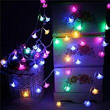 ZYY&LIGHT® Lichterkette 10m LED RGB String Licht Garten Terrasse Party Valentinstag Outdoor Dekoration Beleuchtung [Energieklasse A +] , colorful